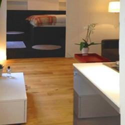 Elastic Paris Architecte d'intérieur salon